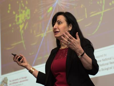 Prof. Marcela Carena, KICP senior member <i>Photo by Rob Hart</i>
